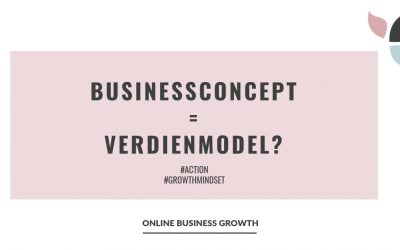 Businessconcept = verdienmodel?
